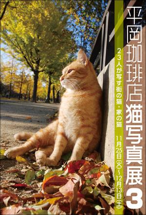 hiraco3dm_omote1.jpg